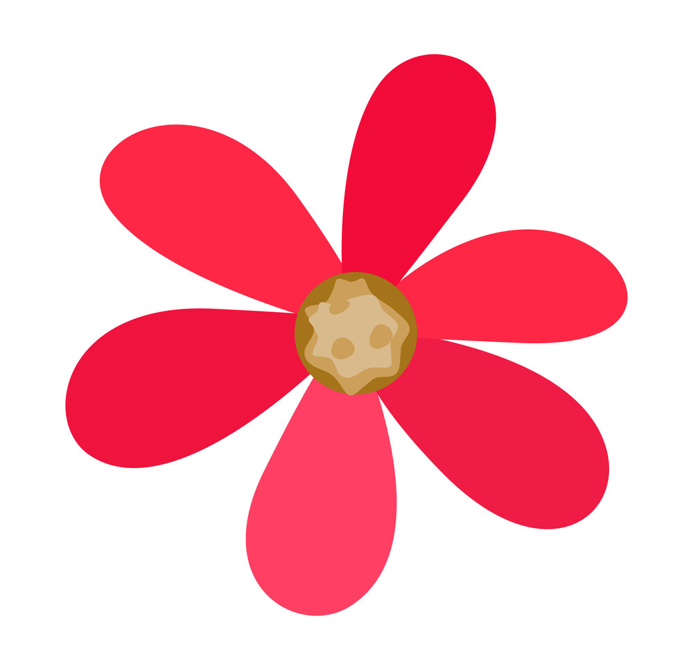 Pink Daisy Shape Design