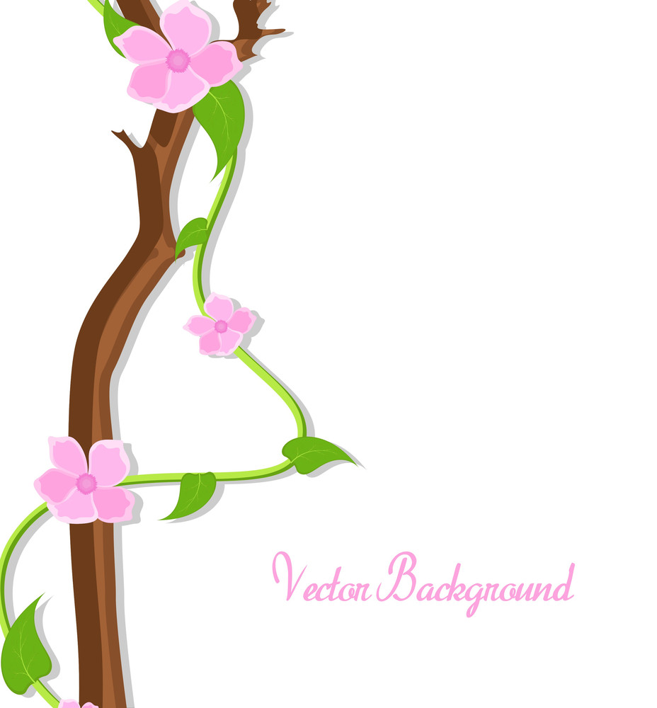 Pink Decor Flowers Branch Vector Banner