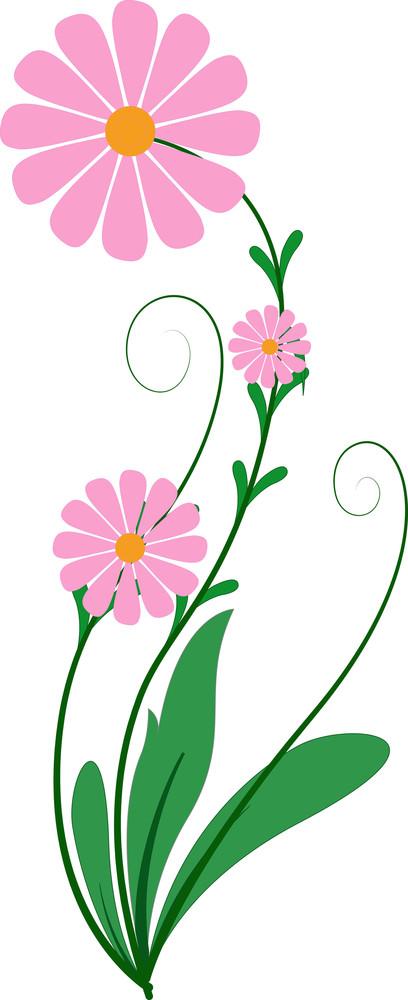 Pink Flourish Design Element