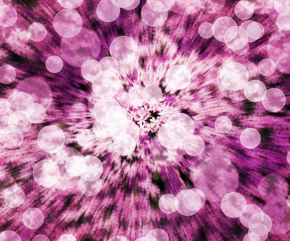 Pink Flower Abstract Background