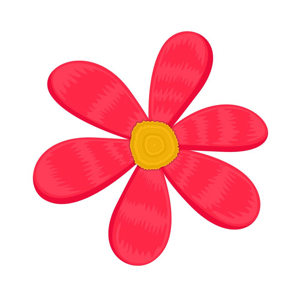Pink Flower Design Vector