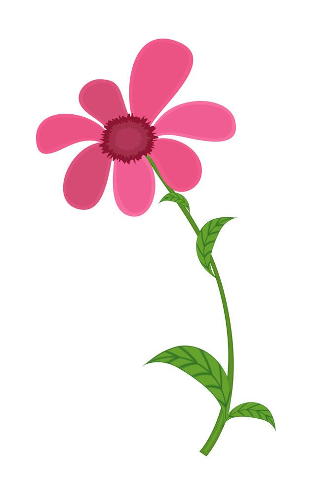 Pink flower drawing art royalty free stock image storyblocks pink flower drawing art mightylinksfo