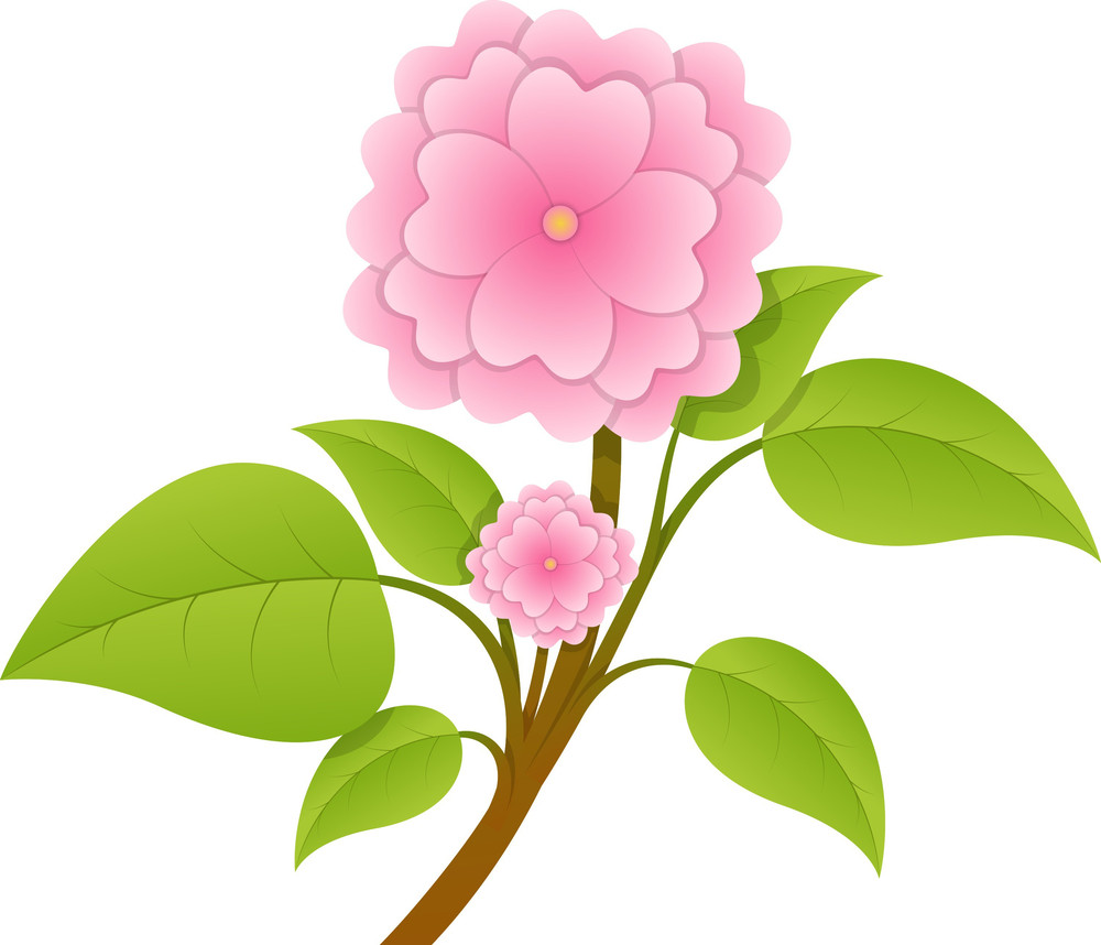 Pink Flower Twig Vector