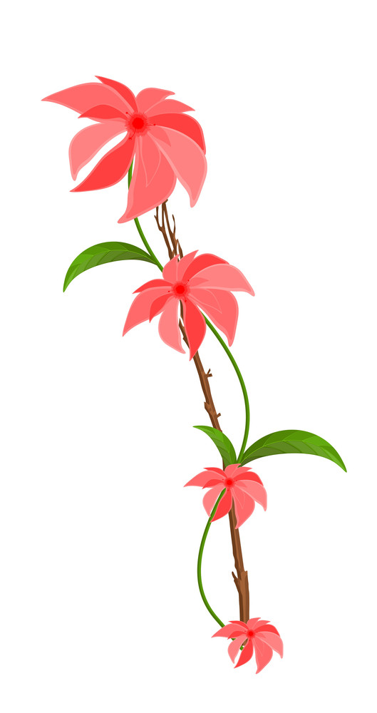 Pink Flower Vector Branch