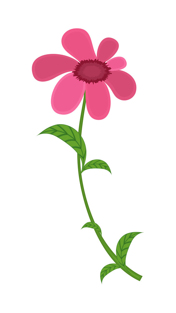 Pink Flower Vector Design Element