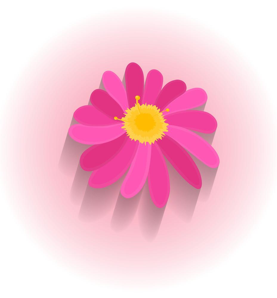 Pink Flower Vector Design