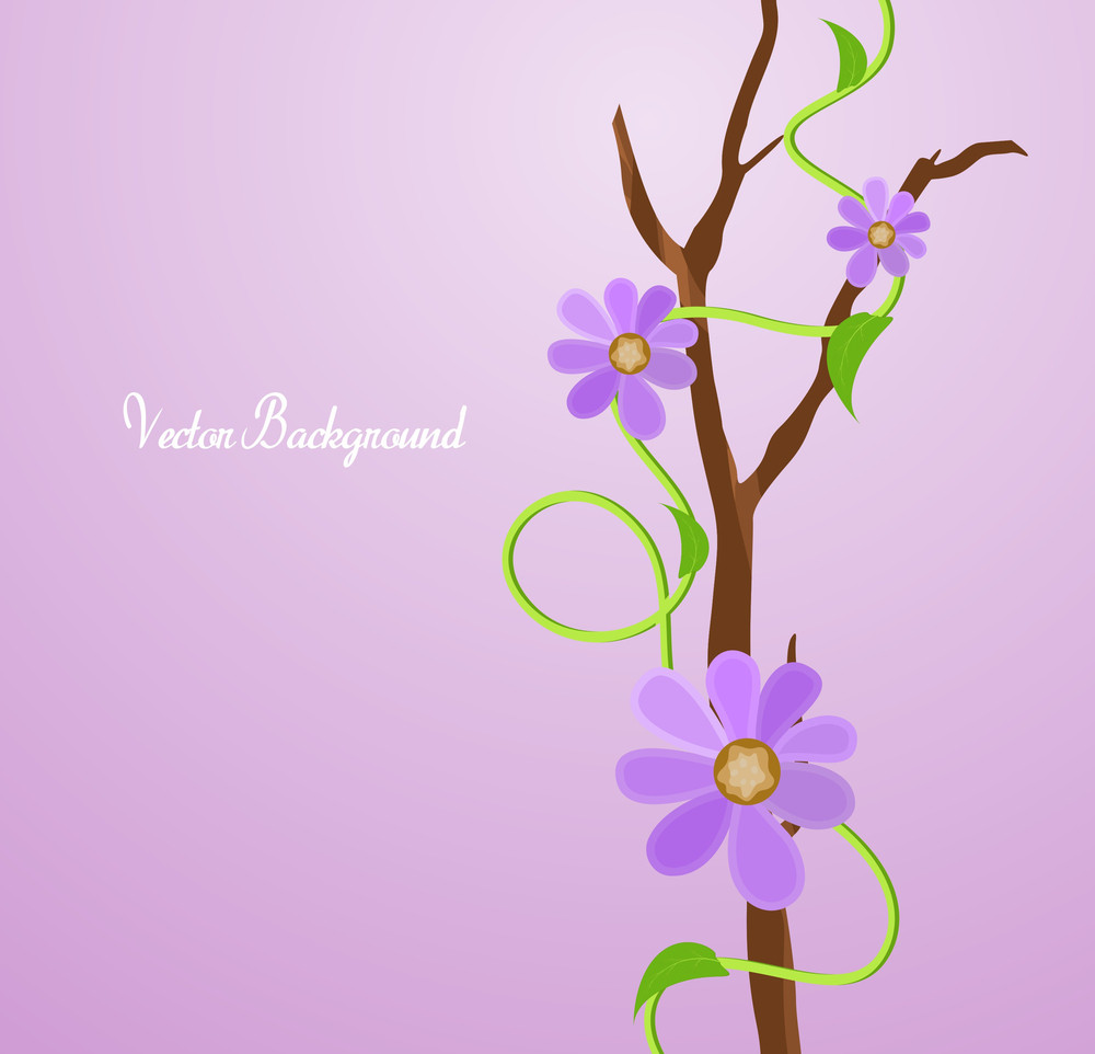 Pink Flowers Branch Vectors