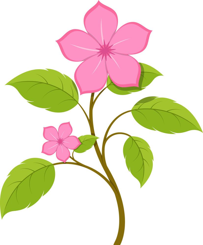 Pink Flowers Branch