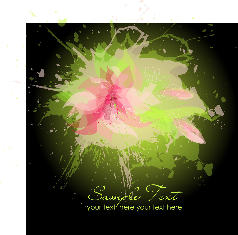 Pink Flowers On Black Background-