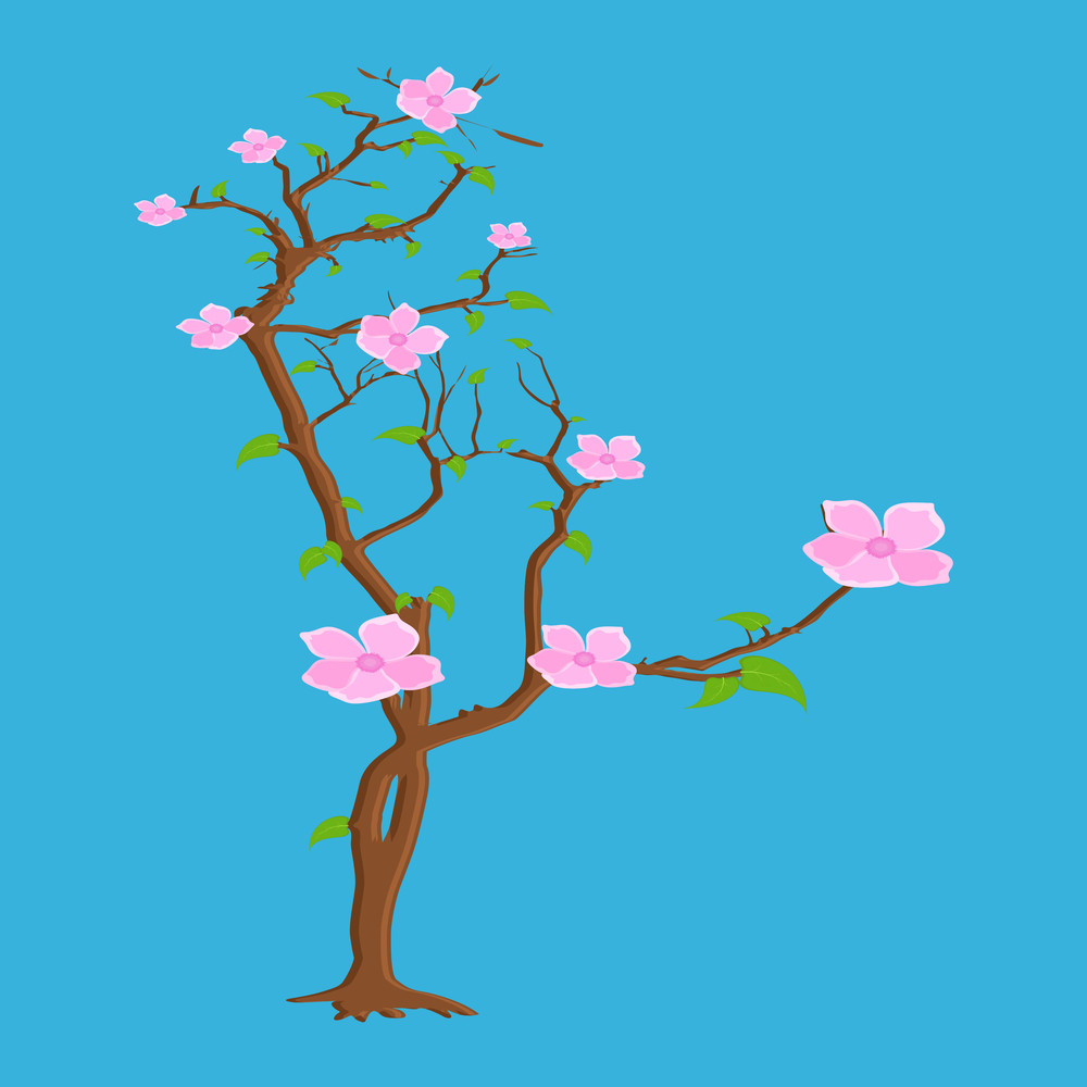 Pink Flowers Plant Vector