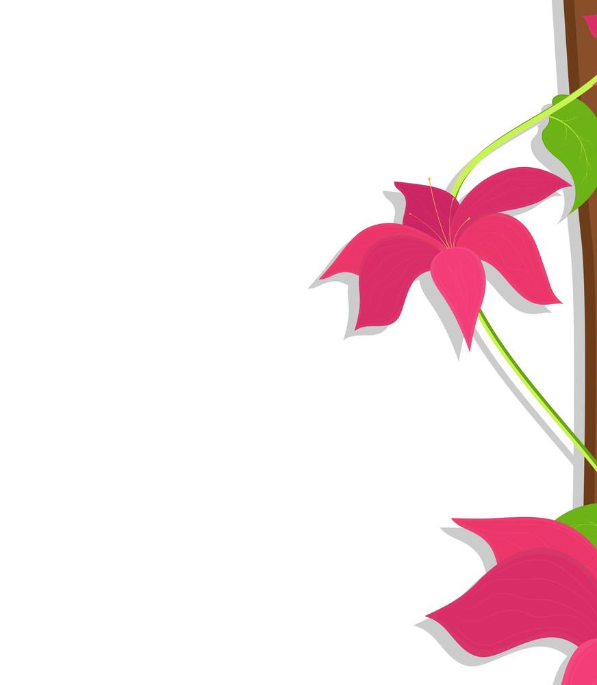 Pink Flowers Vector Banner Design