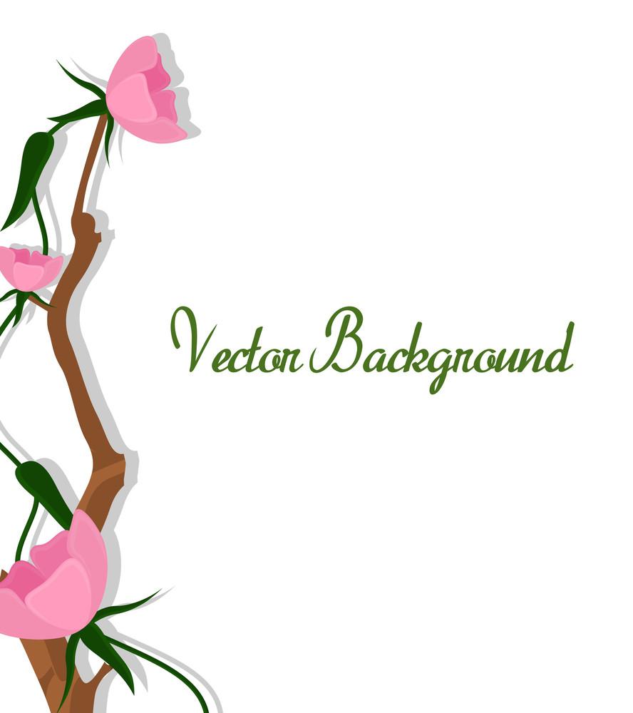 Pink Flowers Vector Banner