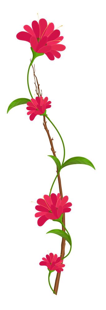 Pink Flowers Vector Branch