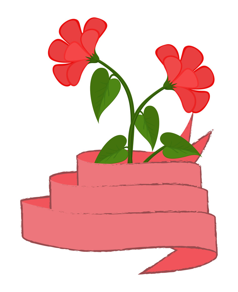 Pink Flowers With Ribbon Banner