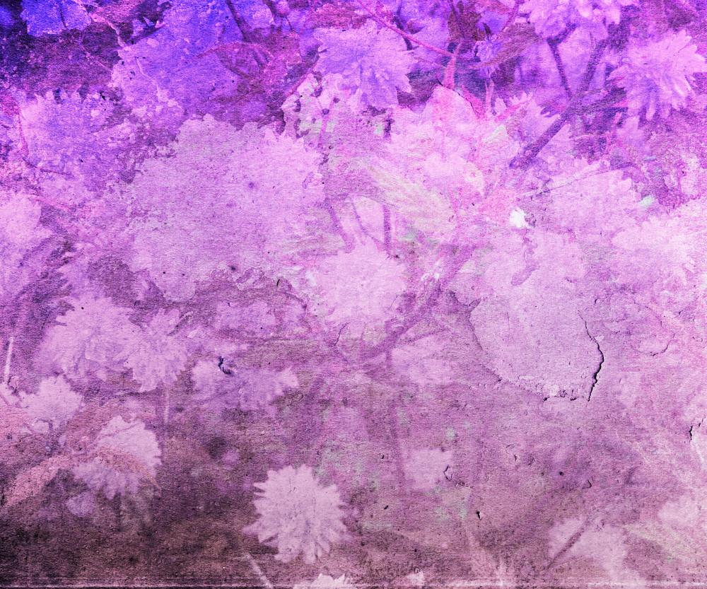 Pink Vintage Flower Texture