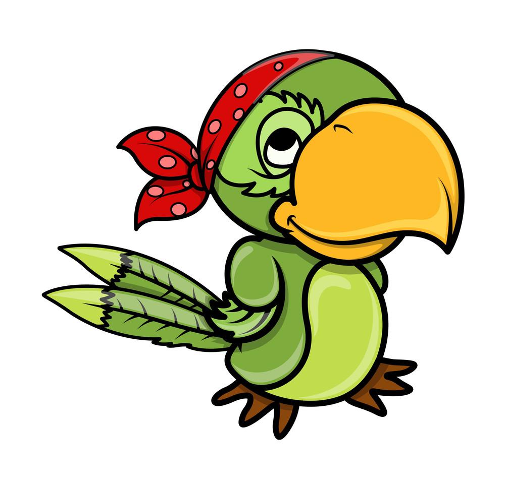 Pirate Parrot - Vector Cartoon Illustration