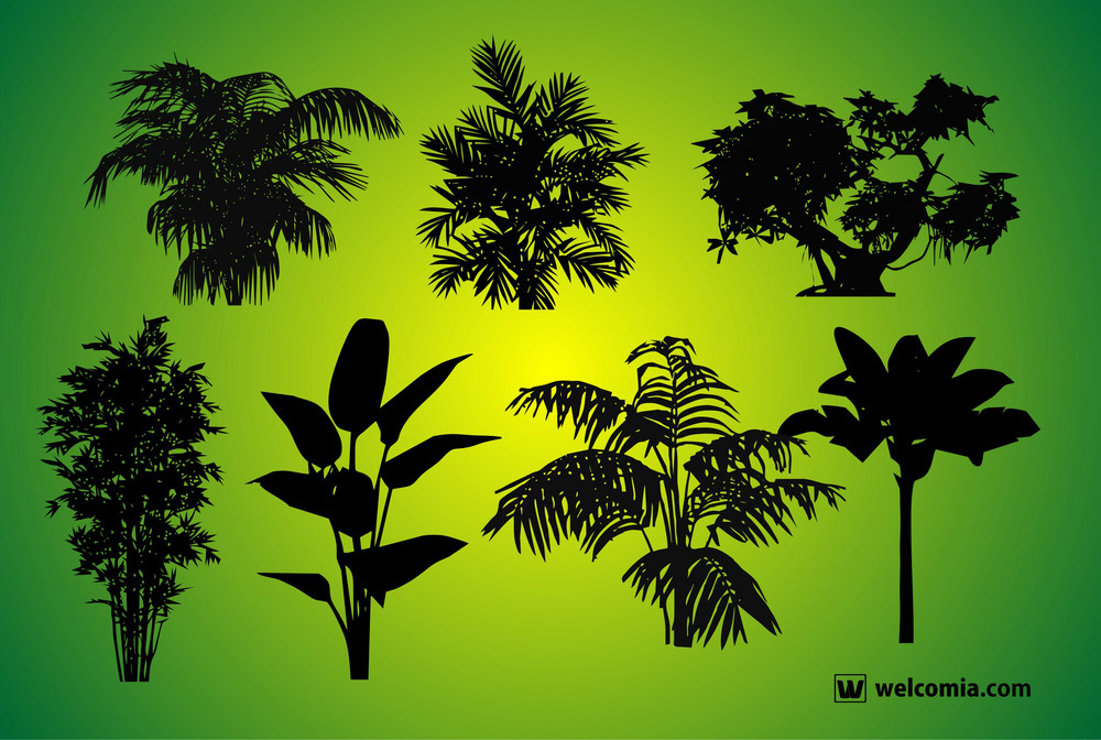 Plants Silhouettes
