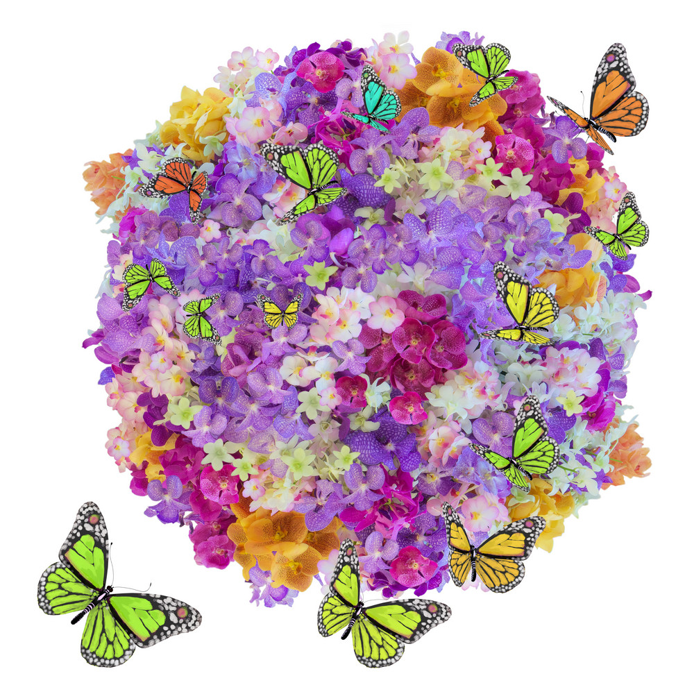 Plenty Flower And Butterfly
