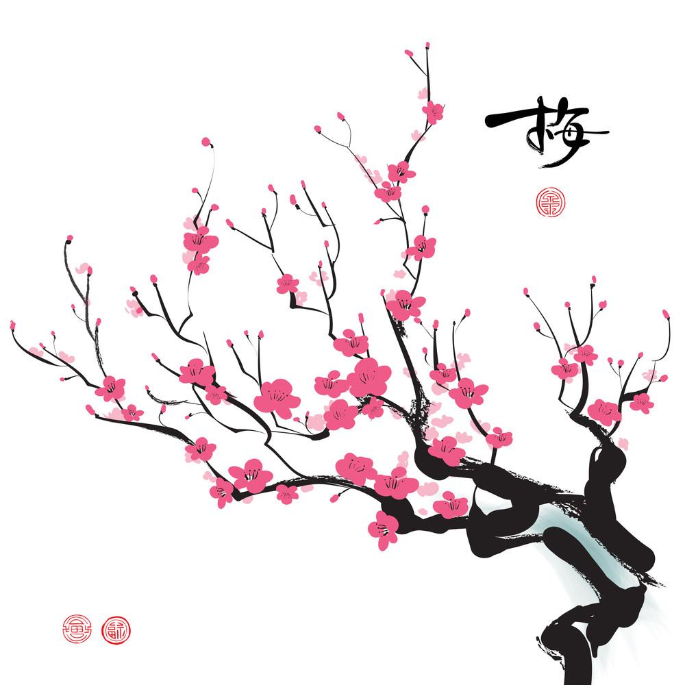 Plum Blossom. Translation: Plum