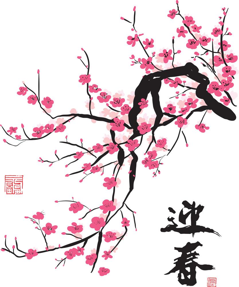 Flor de ameixa. Tradução: Primavera