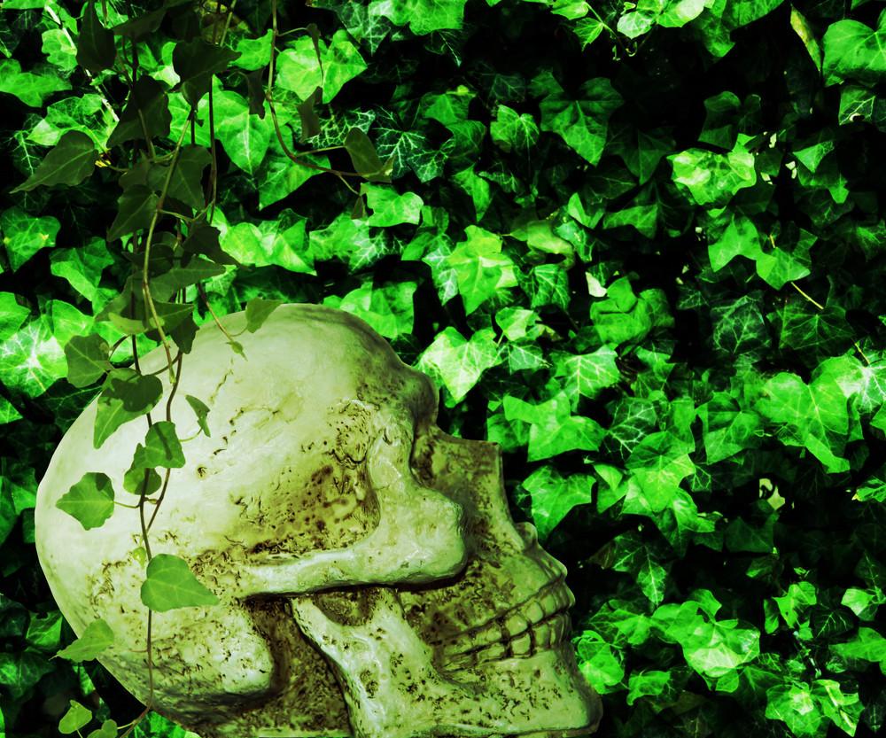 Poison Ivy Background