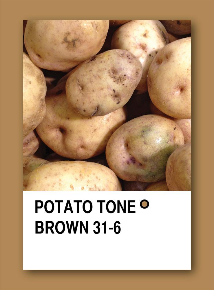 Potato Tone Brown. Color Sample Design