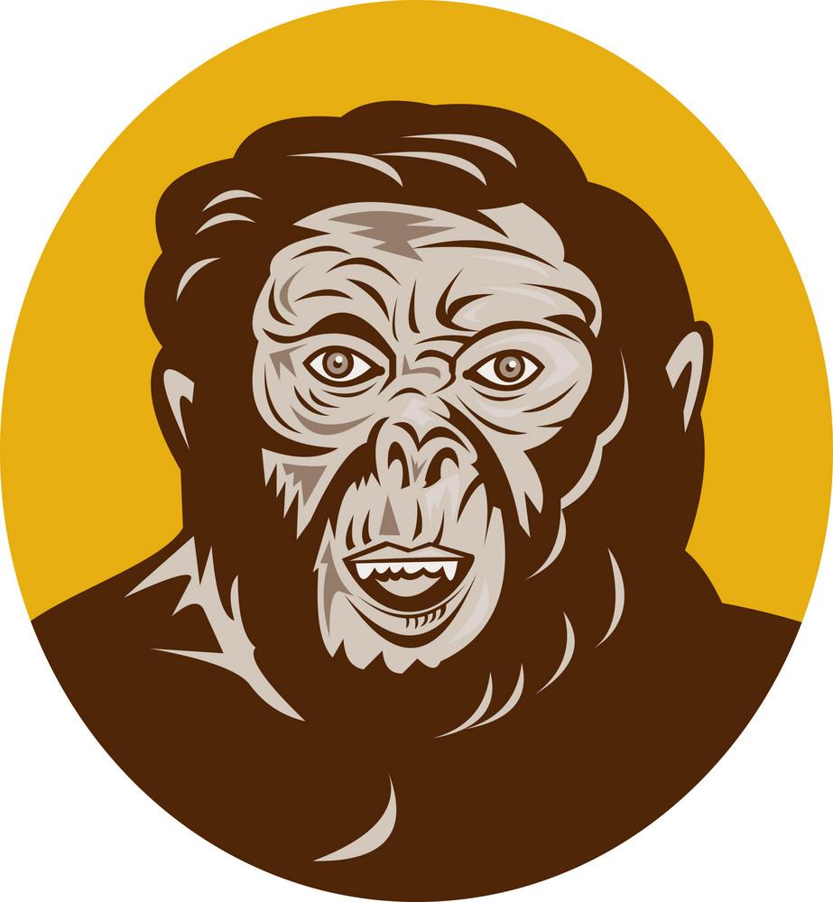 Prehistoric Man Head Facing Front