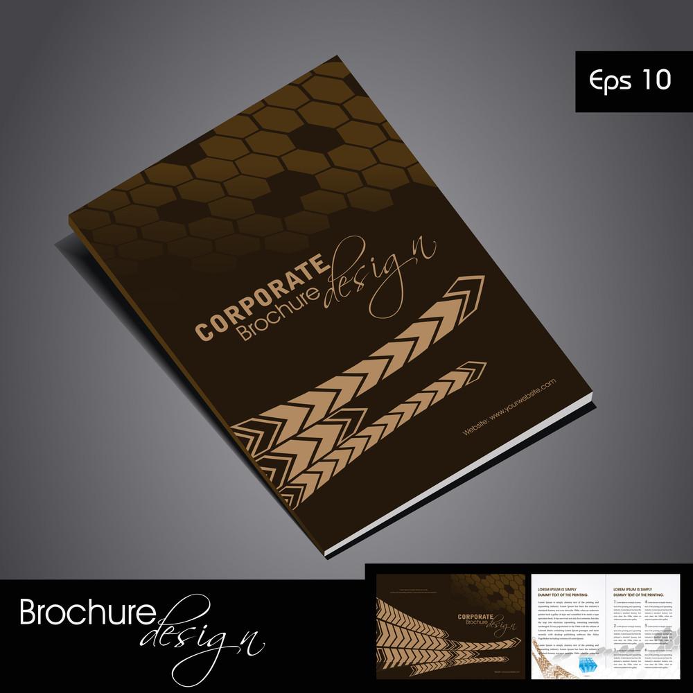 Professional Business Vector & Corporate Brochure Design