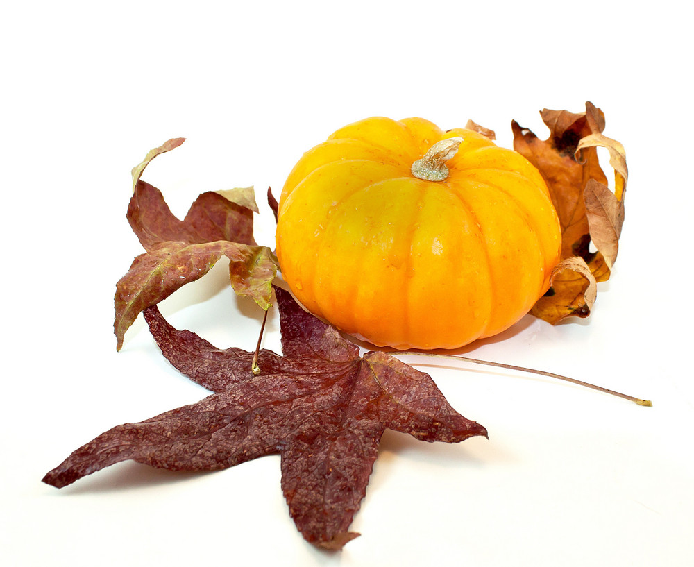 Pumpkin Autumn Leaves