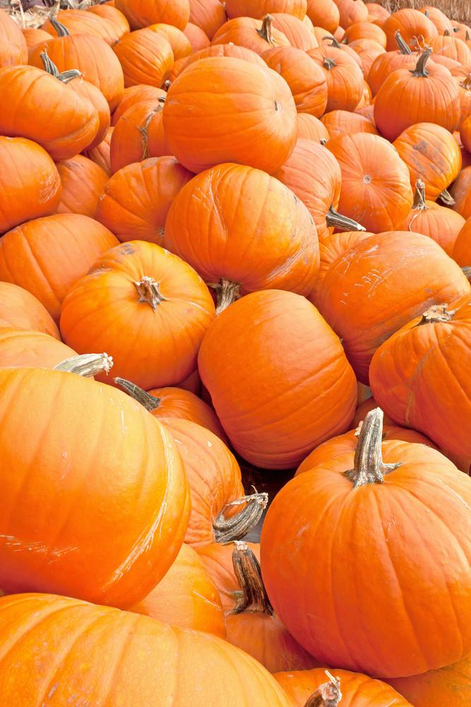 Pumpkin Background Vertical