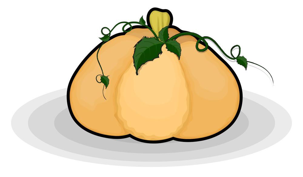 Pumpkin Farming