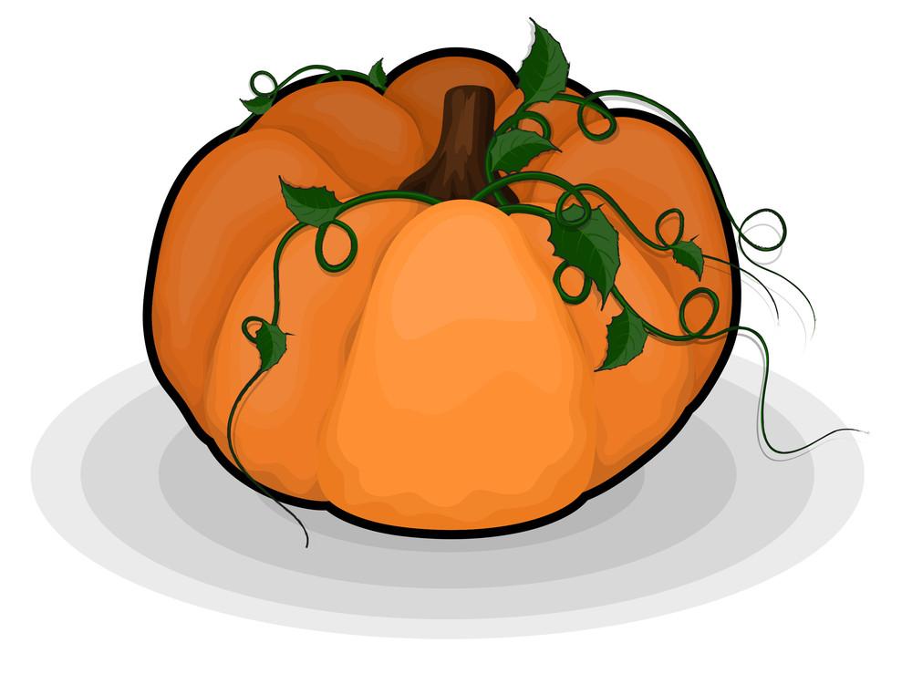 Pumpkin Floral Elements
