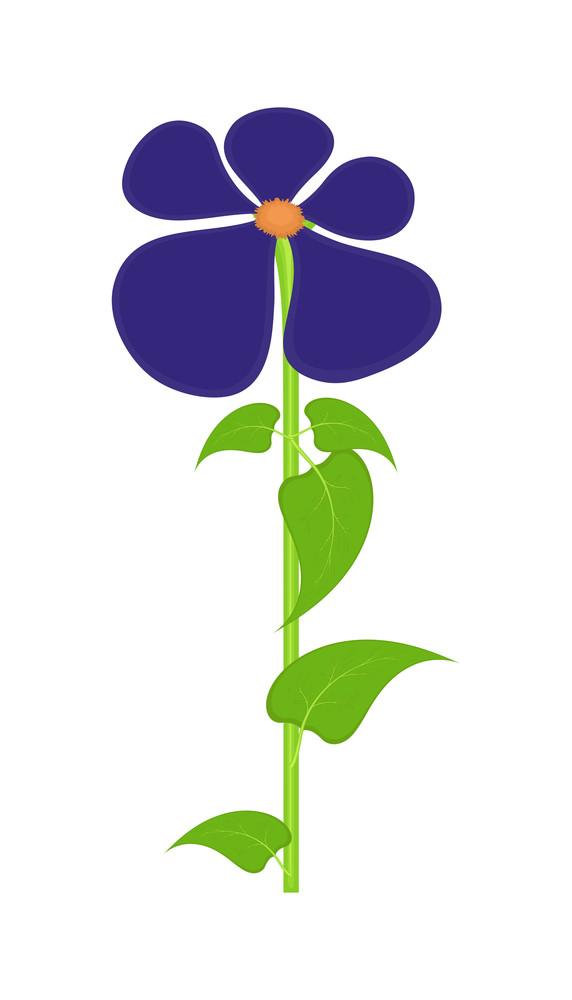 Purple Daisy Desig