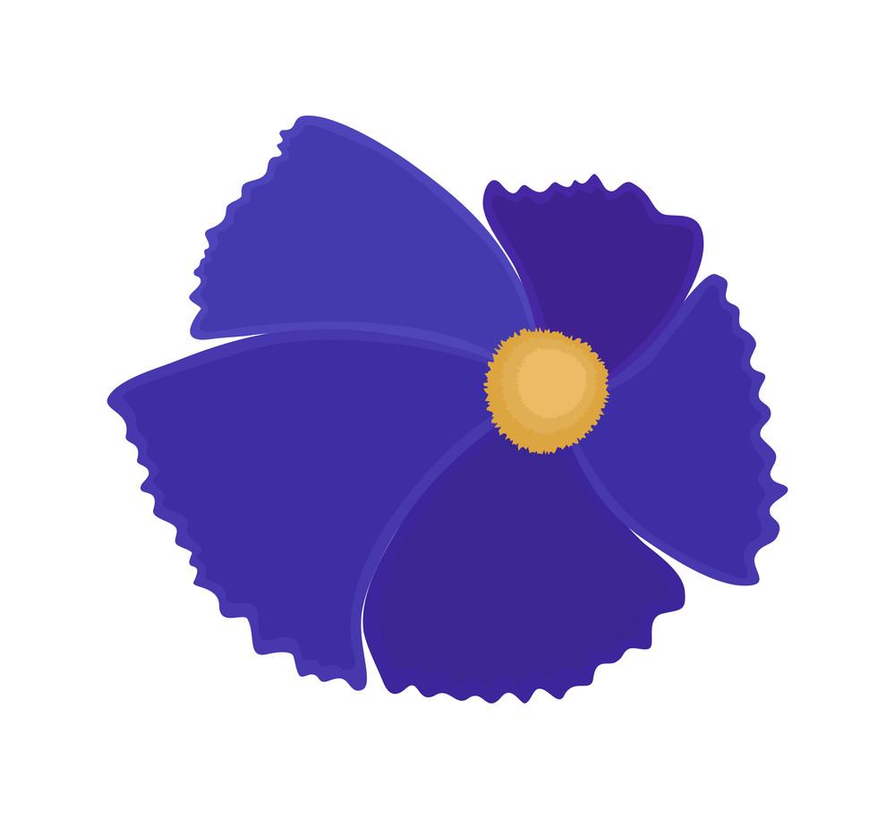 Purple Flower Design