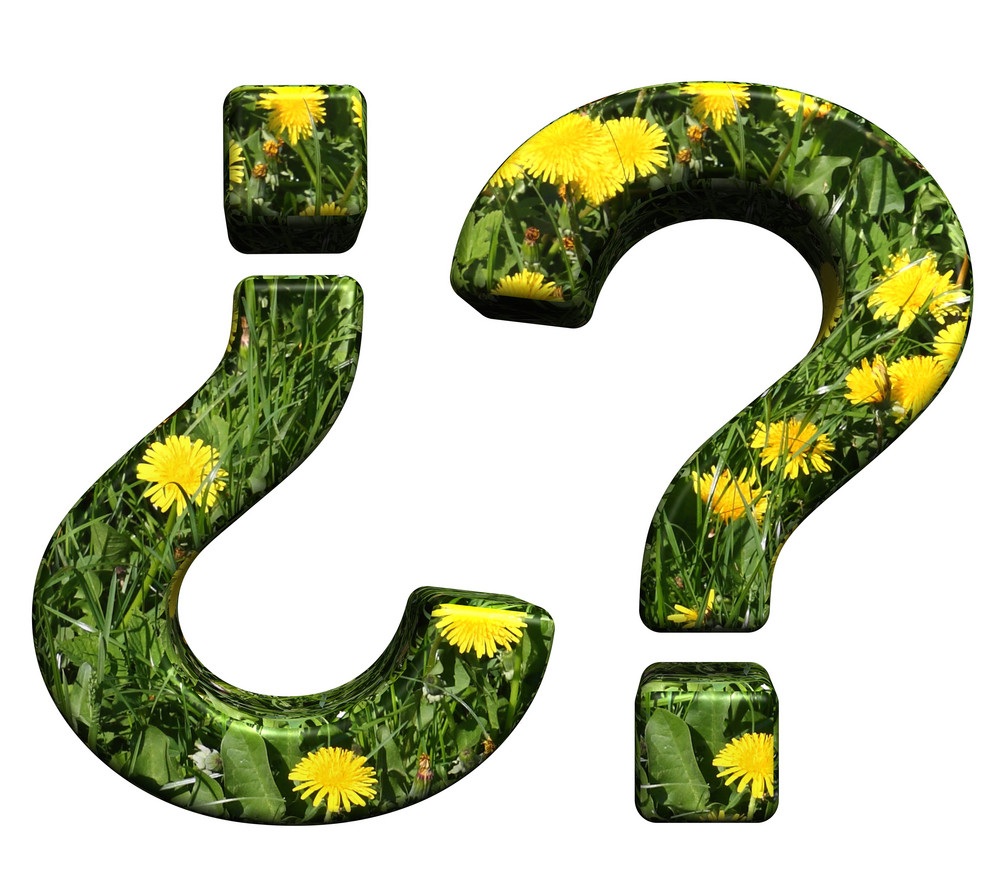 Question Mark From Floral Alphabet Set