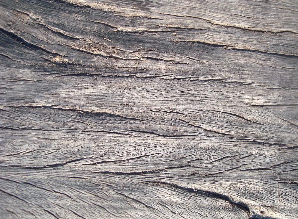 Raw_wood