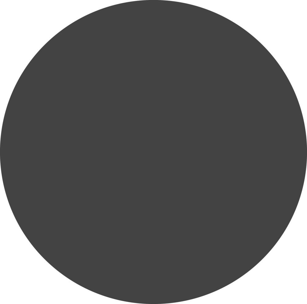 Rec Glyph Icon