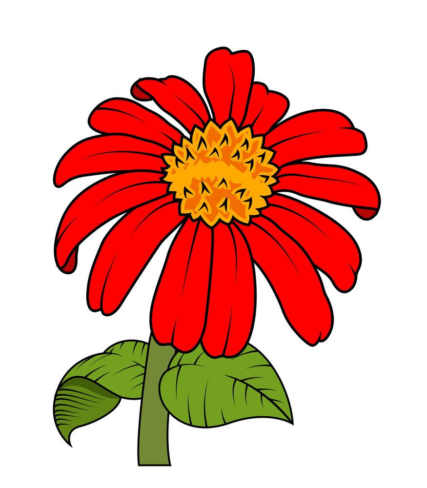 Red Flower Branch Vector
