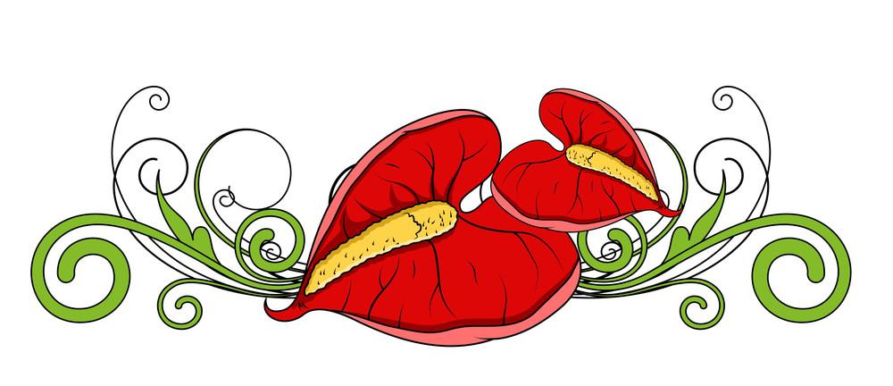 Red Flower Leaves Swirl Divider