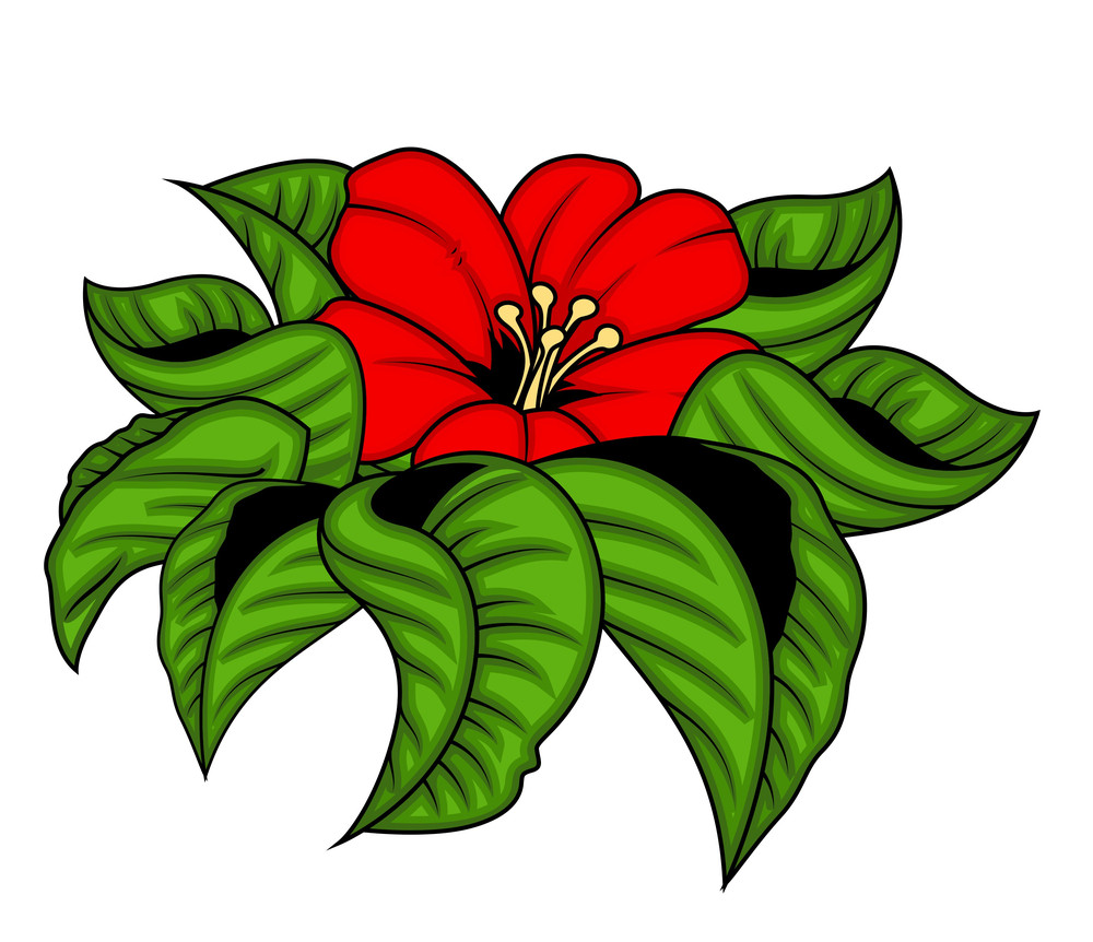 Red Flower With Leaves Vector Illustration