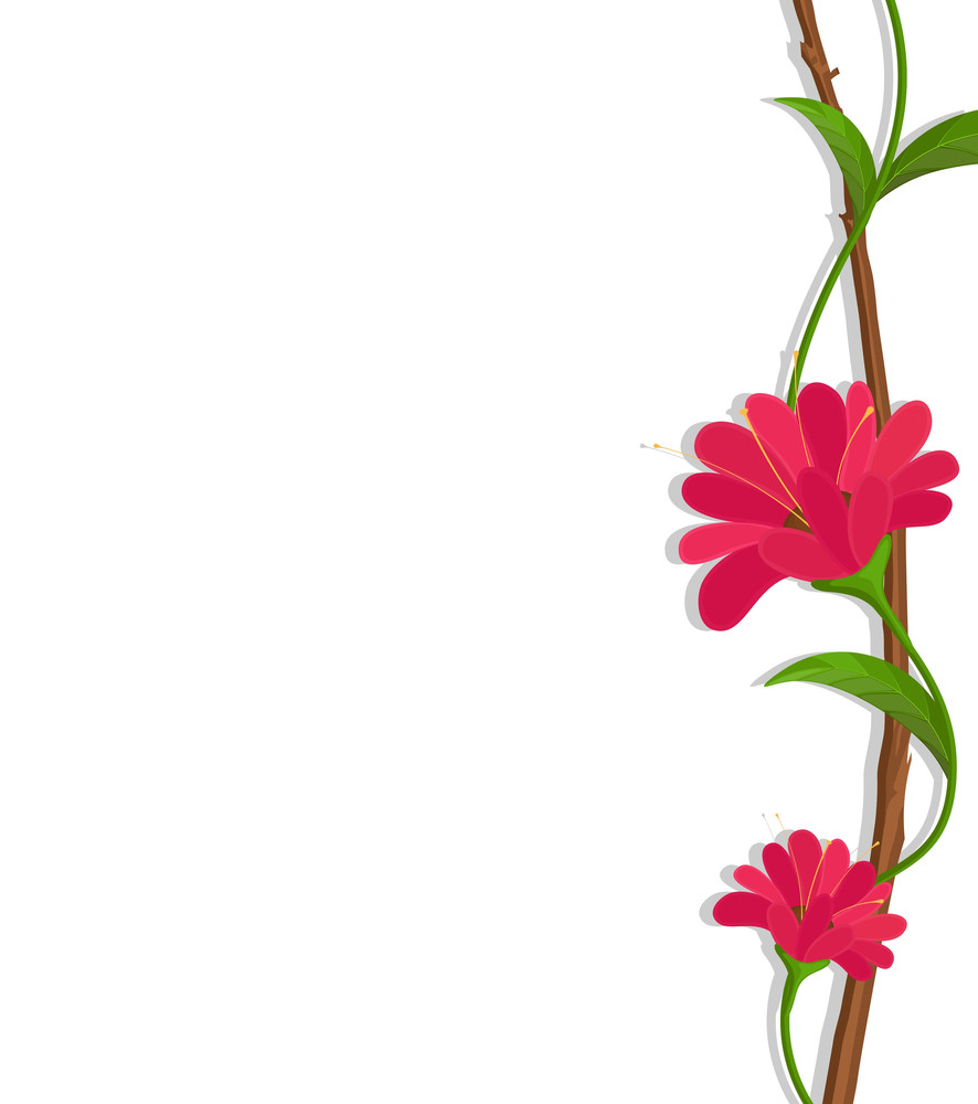 Red Flowers Border Vector Royalty Free Stock Image