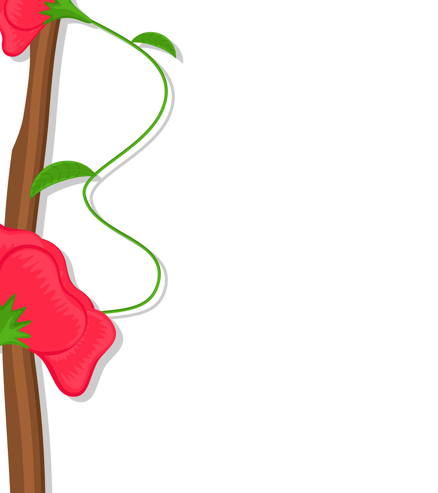 Red Flowers Branch Vector Banner