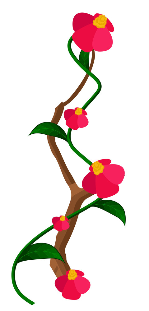 Red Flowers Vector Branch Element
