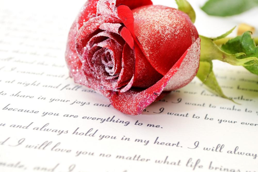 red rose on love letter