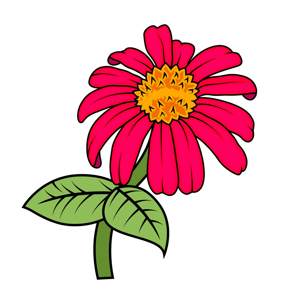 Red Vector Flower