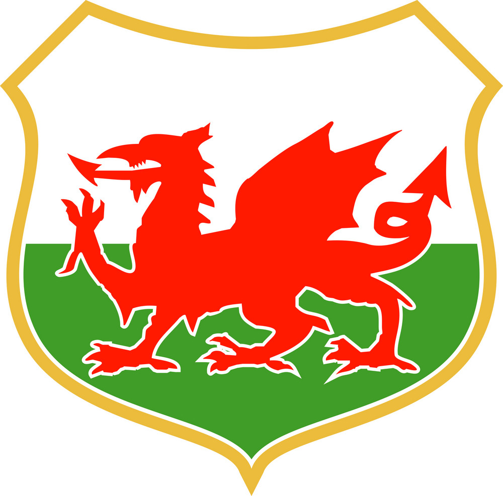 Red Welsh Dragon