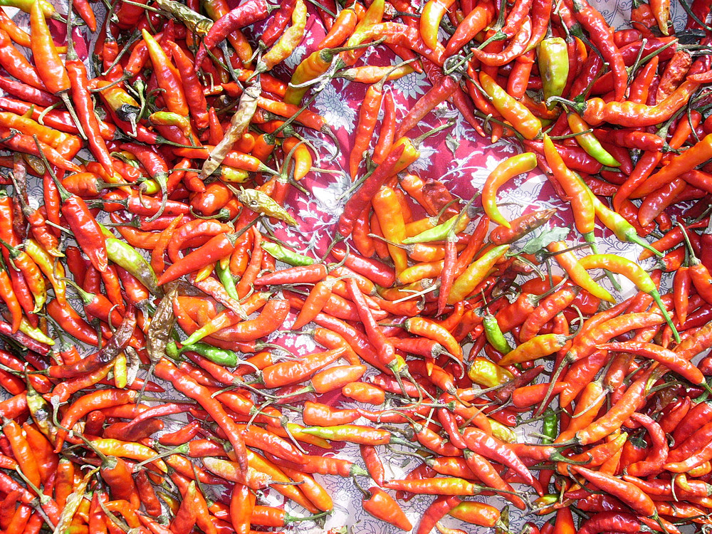 Red_chillies_-_traditional_indian_background
