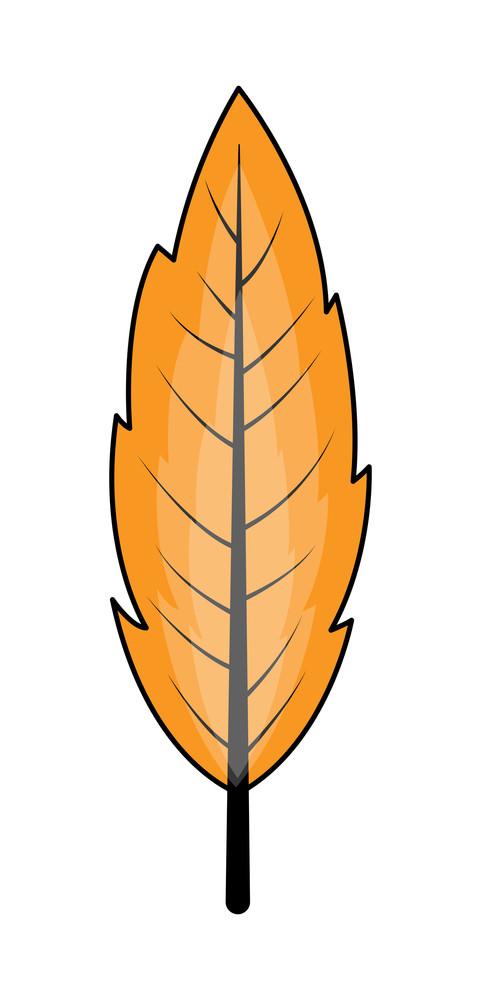 Retro Leaf Design Vector