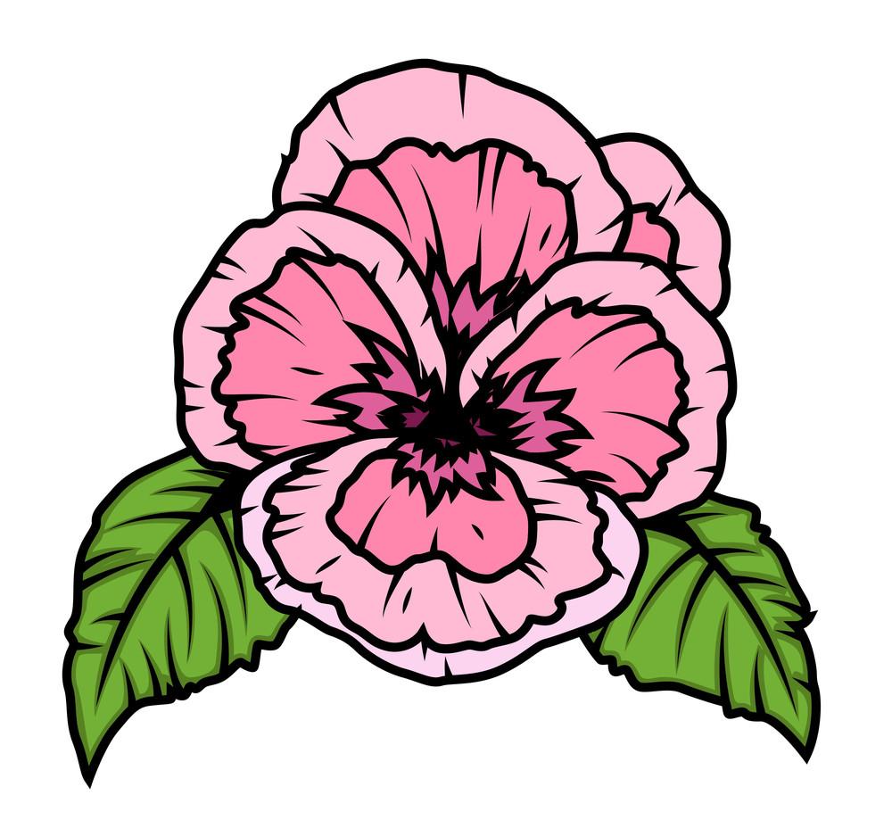 Retro Poppy Flower