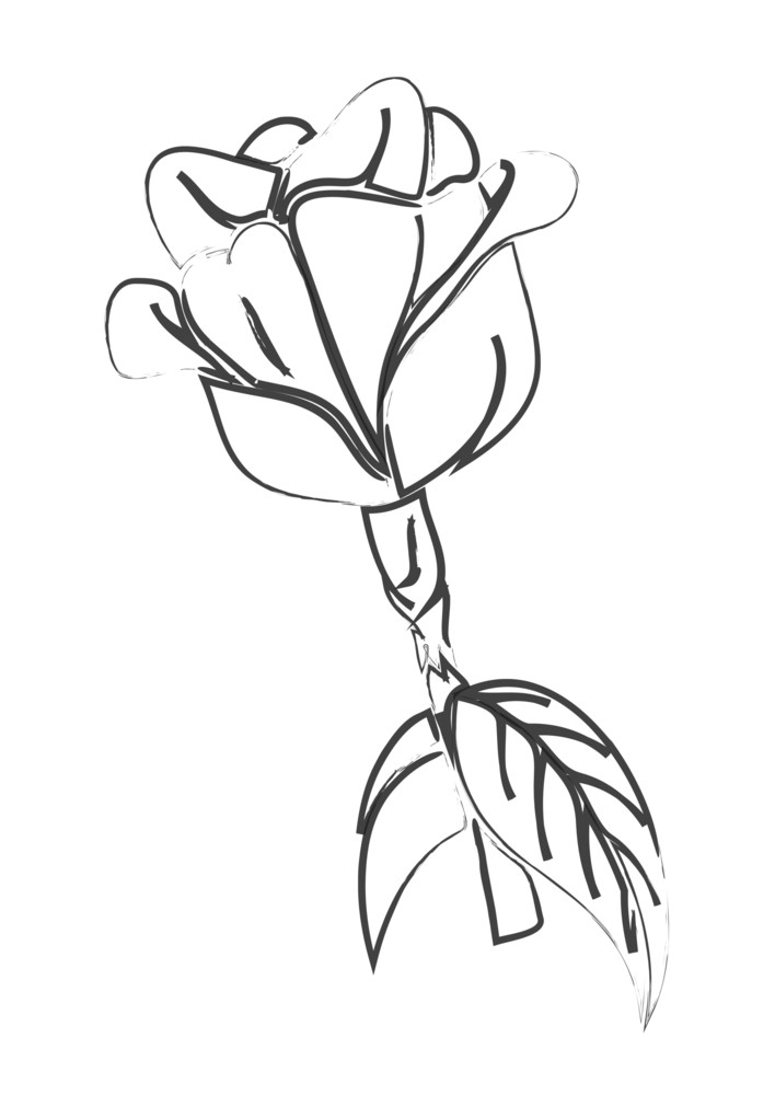 Retro Rose Sketching